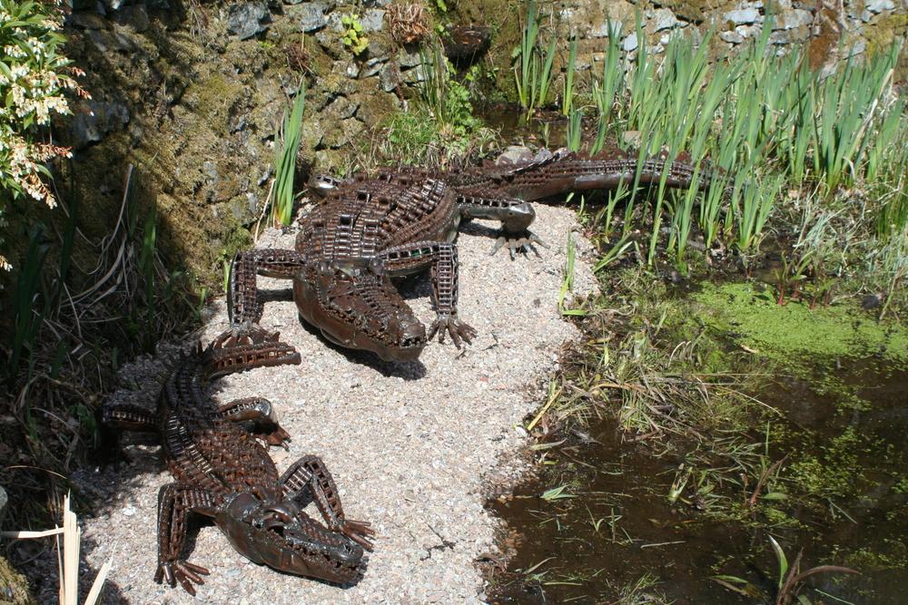 2 crocodiles