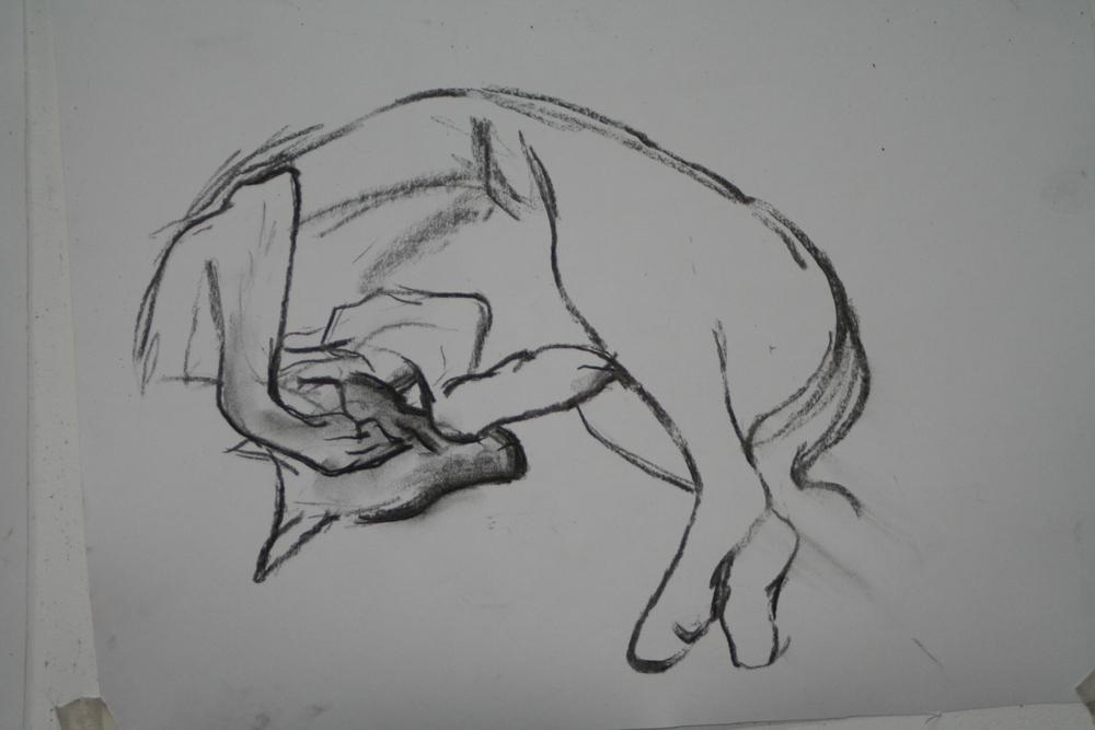 Molly Drawing 2