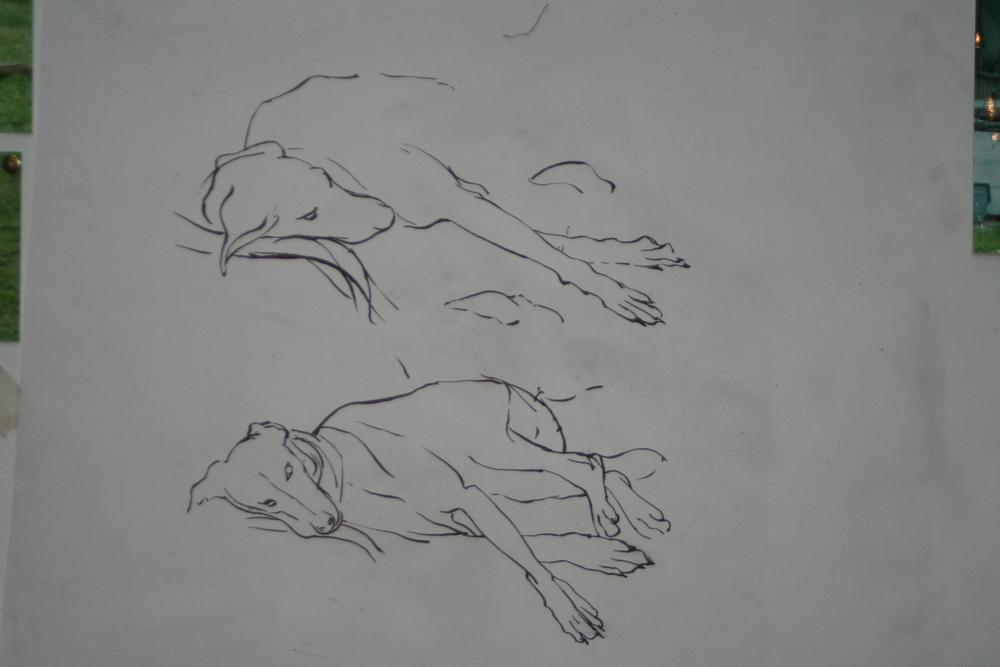 Molly drawing 1