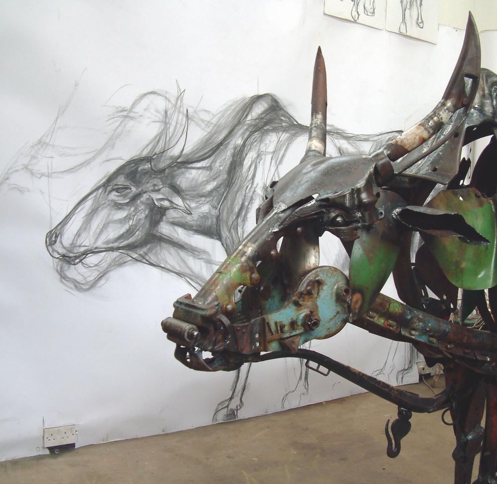 bull studio - Copy