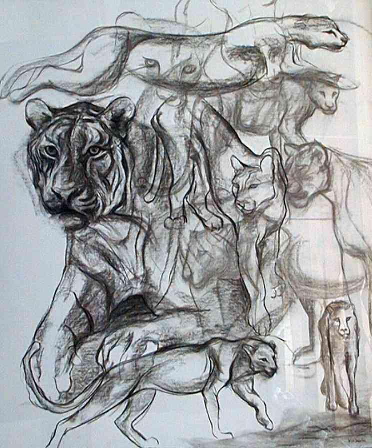 drawing - Big cats
