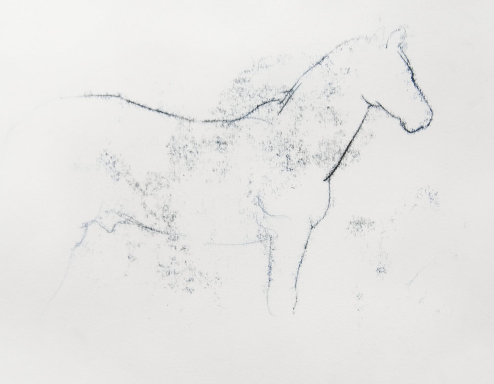 horse feint