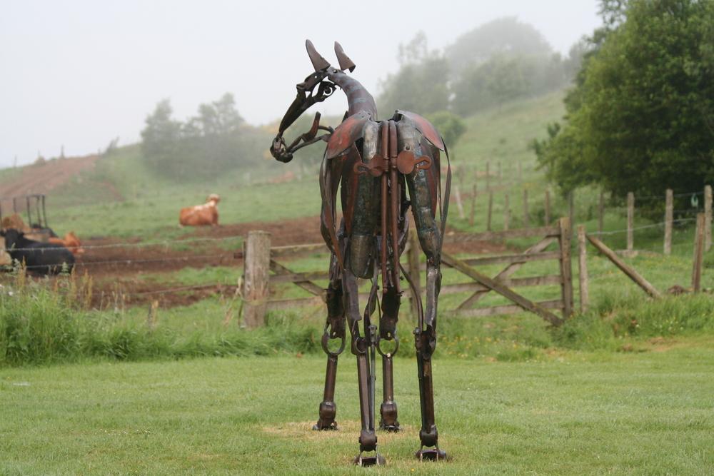 horse rear
