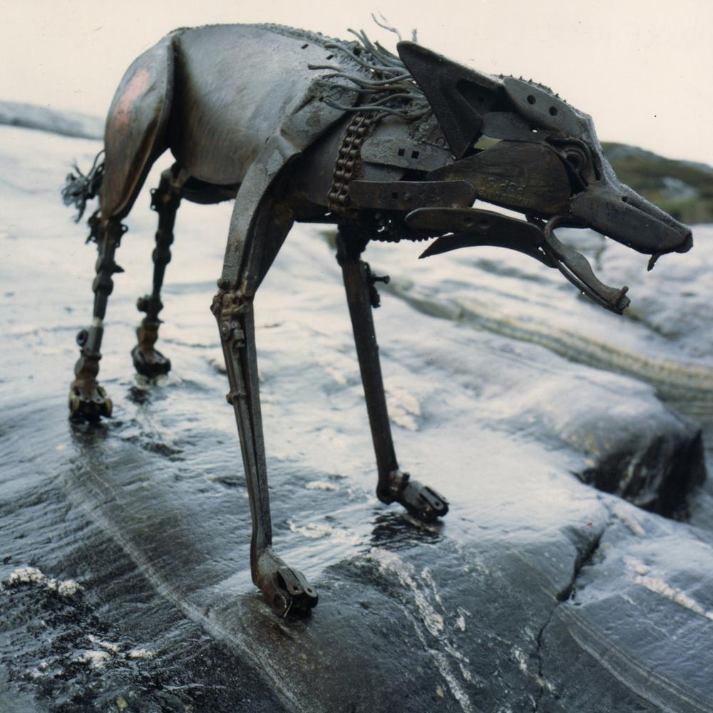 lone wolf_
