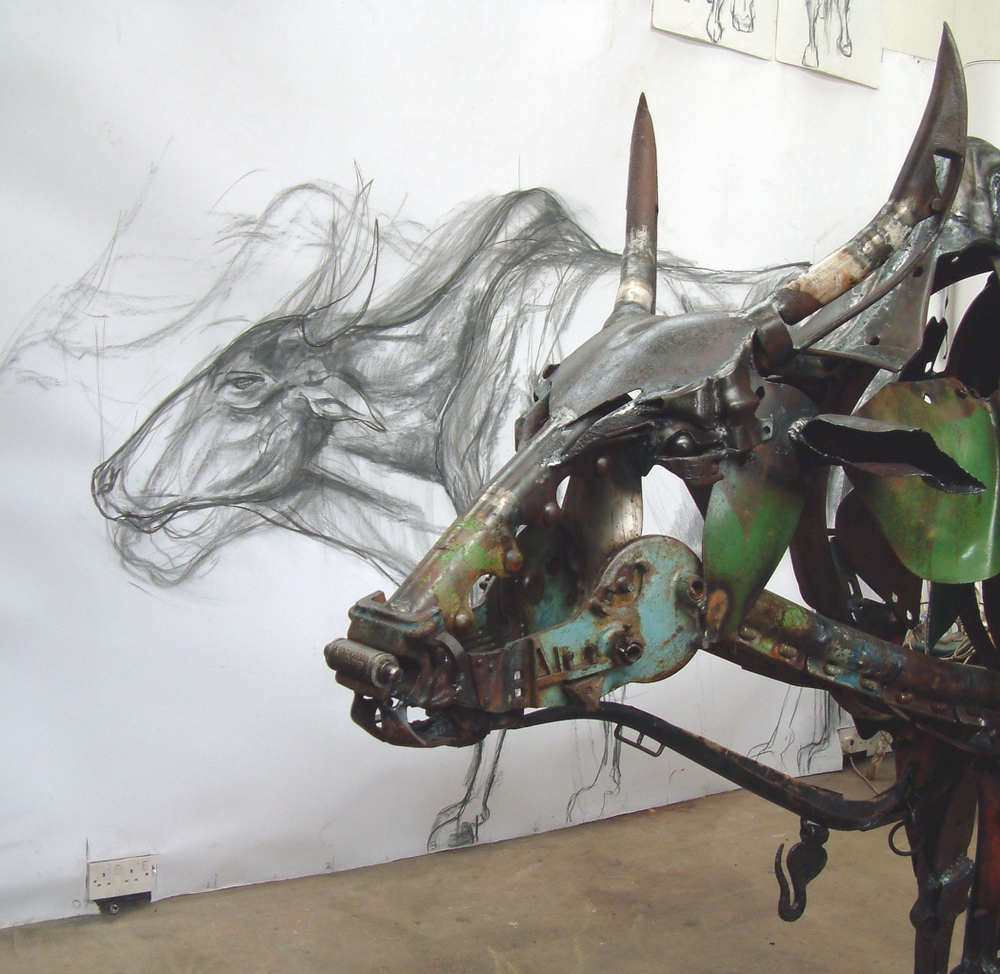 sacred cow with drawing