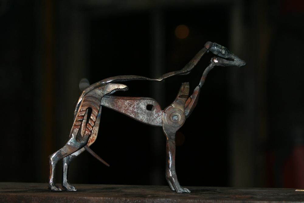 wee greyhound