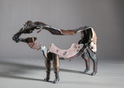 miniture bull